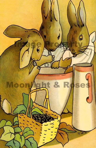 Peter Rabbit | MoonlightandRoses.com| Exquisite Wall Art, Large and ...